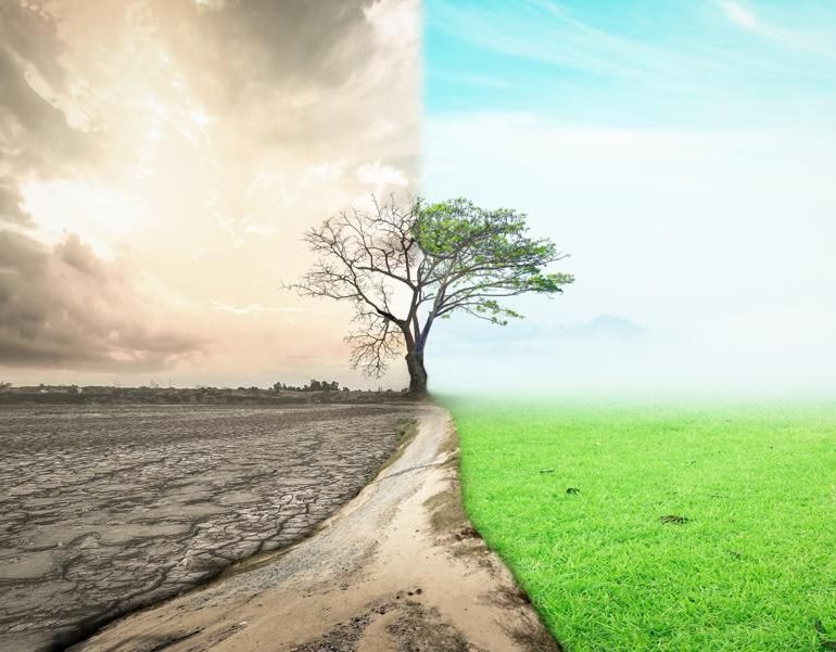 5 Ways To Go From A Scarcity To Abundance Mindset